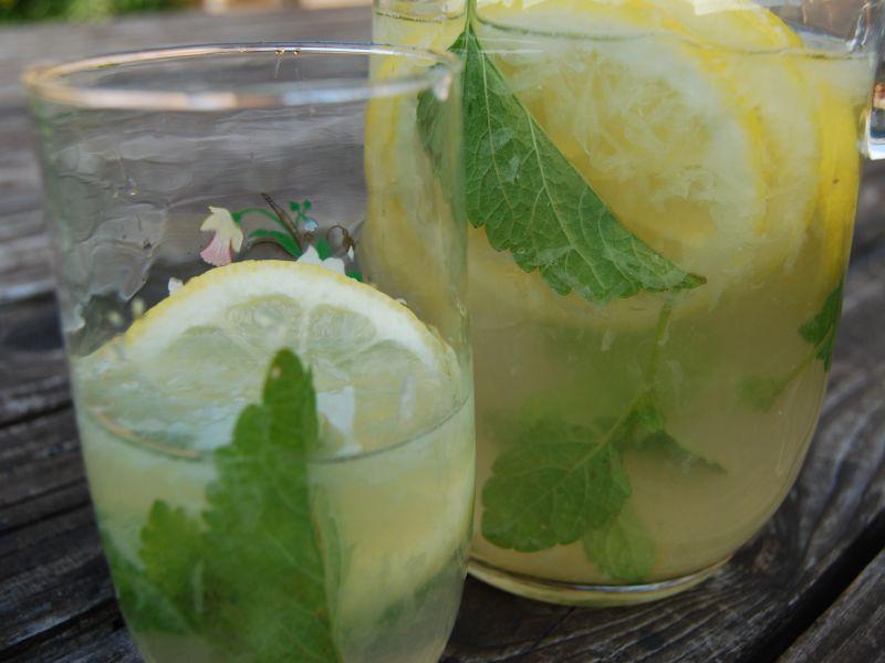 Citrónová limonáda s mätou